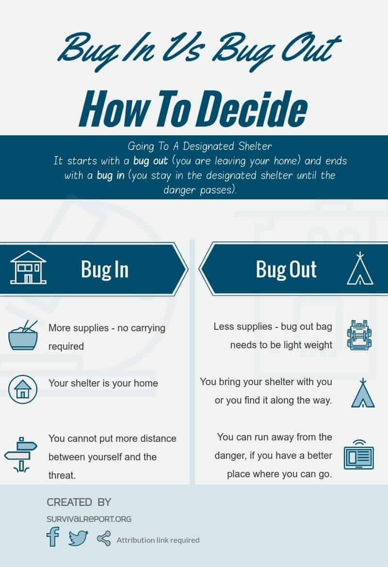 Bug In VS Bug Out Infographic