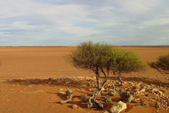 Outback Bushwalking