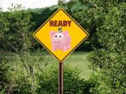 ready sign with piggybank